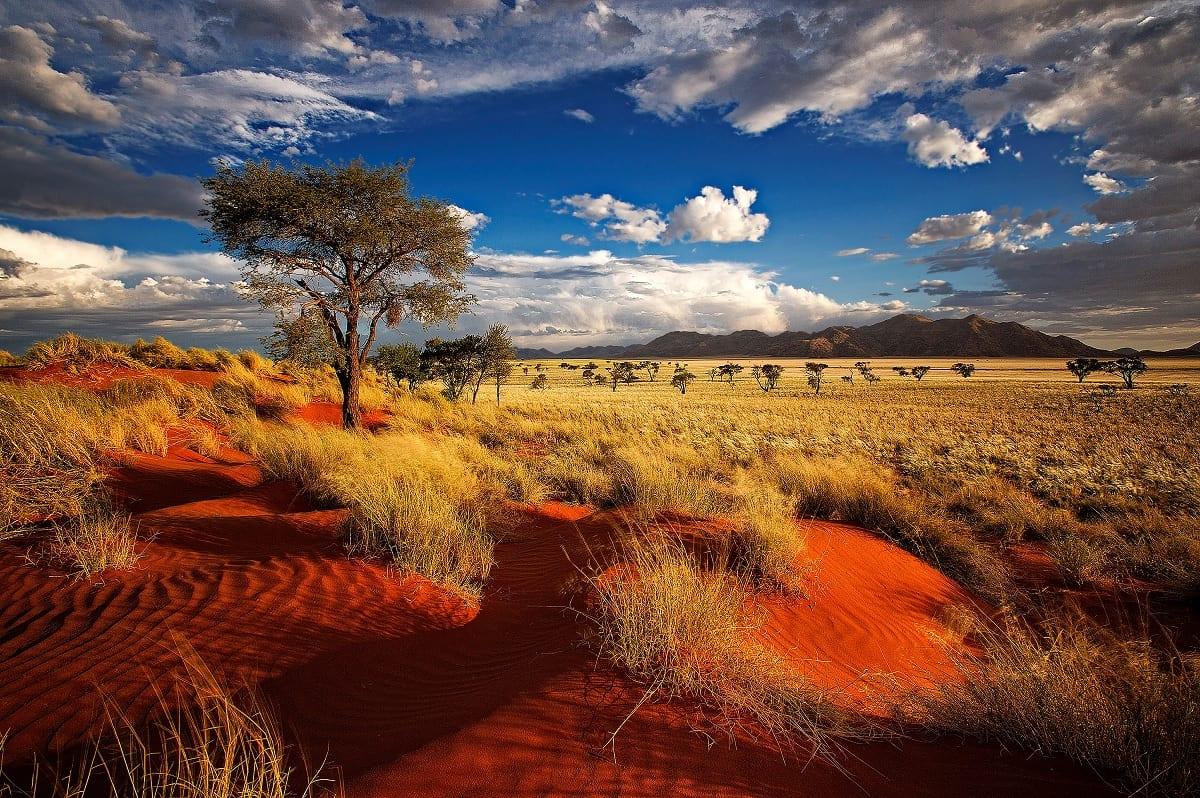 Risultati immagini per namibia